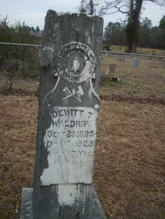 WALDRIP, DEWITT T - Calhoun County, Arkansas | DEWITT T WALDRIP - Arkansas Gravestone Photos
