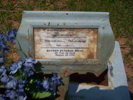 WATSON, JASON RUSSELL - Calhoun County, Arkansas | JASON RUSSELL WATSON - Arkansas Gravestone Photos