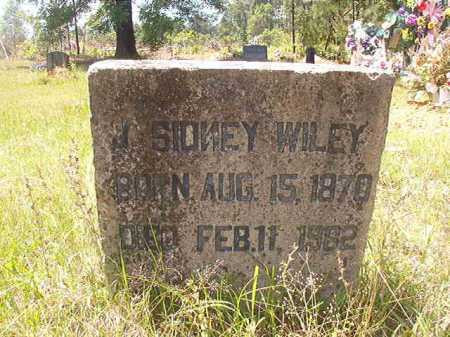 WILEY, J SIDNEY - Calhoun County, Arkansas | J SIDNEY WILEY - Arkansas Gravestone Photos
