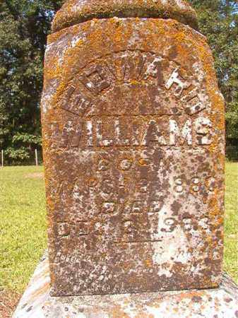 WILLIAMS, EDWARD - Calhoun County, Arkansas | EDWARD WILLIAMS - Arkansas Gravestone Photos