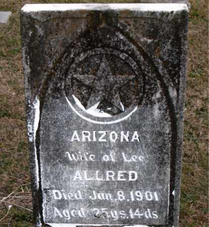 ALLRED, ARIZONA - Carroll County, Arkansas | ARIZONA ALLRED - Arkansas Gravestone Photos
