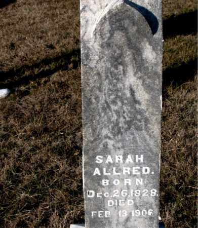 ALLRED, SARAH - Carroll County, Arkansas | SARAH ALLRED - Arkansas Gravestone Photos