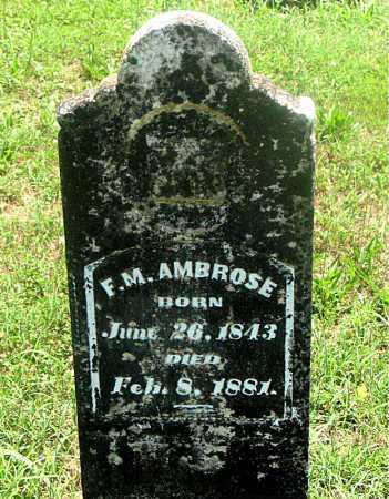 AMBROSE, FRANCIS MARION - Carroll County, Arkansas | FRANCIS MARION AMBROSE - Arkansas Gravestone Photos