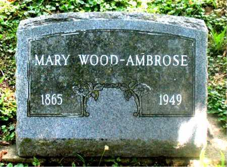 AMBROSE, MARY - Carroll County, Arkansas | MARY AMBROSE - Arkansas Gravestone Photos