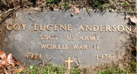 ANDERSON (VETERAN WWII), COY EUGENE - Carroll County, Arkansas | COY EUGENE ANDERSON (VETERAN WWII) - Arkansas Gravestone Photos