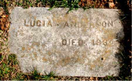 ANDERSON, LUCIA - Carroll County, Arkansas | LUCIA ANDERSON - Arkansas Gravestone Photos