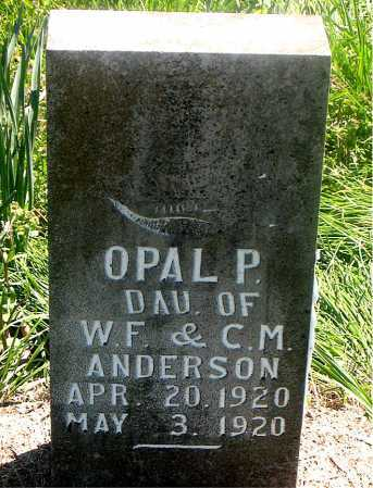 ANDERSON, OPAL P - Carroll County, Arkansas | OPAL P ANDERSON - Arkansas Gravestone Photos
