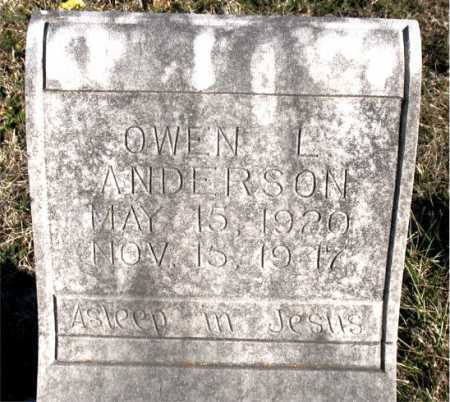 ANDERSON, OWEN L. - Carroll County, Arkansas | OWEN L. ANDERSON - Arkansas Gravestone Photos