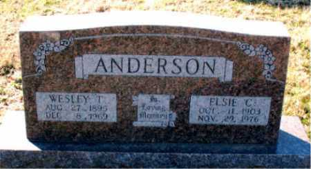 ANDERSON, WESLEY T - Carroll County, Arkansas | WESLEY T ANDERSON - Arkansas Gravestone Photos
