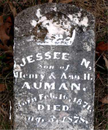 AUMAN, JESSEE N - Carroll County, Arkansas | JESSEE N AUMAN - Arkansas Gravestone Photos