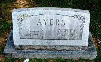 AYERS, NELLIE M - Carroll County, Arkansas | NELLIE M AYERS - Arkansas Gravestone Photos