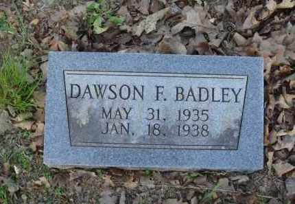 BADLEY, DAWSON F. - Carroll County, Arkansas | DAWSON F. BADLEY - Arkansas Gravestone Photos