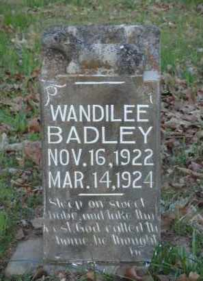 BADLEY, WANDILEE - Carroll County, Arkansas | WANDILEE BADLEY - Arkansas Gravestone Photos