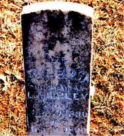 BAILEY, JAMES W. - Carroll County, Arkansas | JAMES W. BAILEY - Arkansas Gravestone Photos