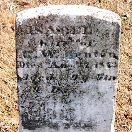 BENTON, ISABELL - Carroll County, Arkansas | ISABELL BENTON - Arkansas Gravestone Photos