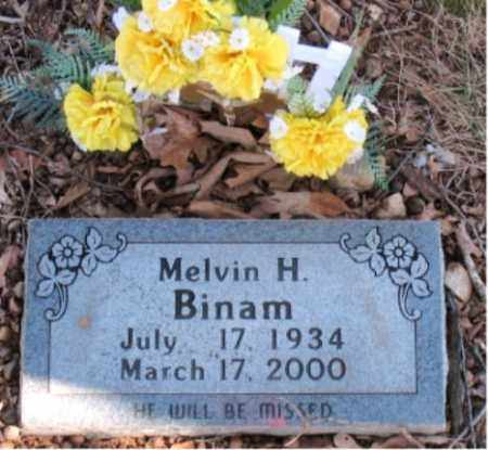 BINAM, MELVIN H - Carroll County, Arkansas | MELVIN H BINAM - Arkansas Gravestone Photos