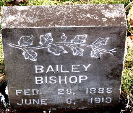 BISHOP, BAILEY - Carroll County, Arkansas | BAILEY BISHOP - Arkansas Gravestone Photos