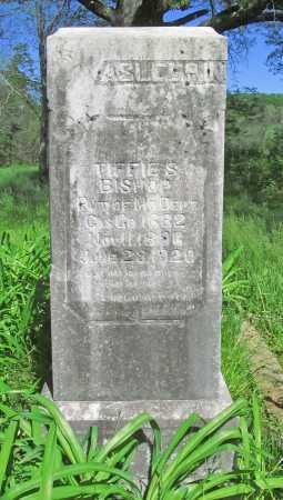BISHOP (VETERAN), TIFFIE S - Carroll County, Arkansas   TIFFIE S BISHOP (VETERAN) - Arkansas Gravestone Photos