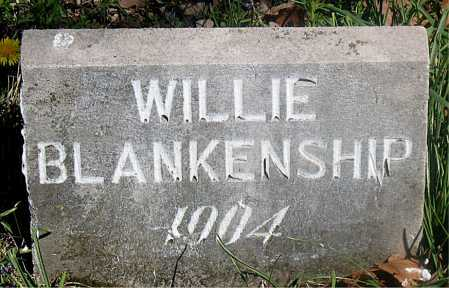 BLANKENSHIP, WILLIE - Carroll County, Arkansas | WILLIE BLANKENSHIP - Arkansas Gravestone Photos