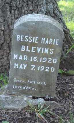 BLEVINS, BESSIE MARIE - Carroll County, Arkansas | BESSIE MARIE BLEVINS - Arkansas Gravestone Photos