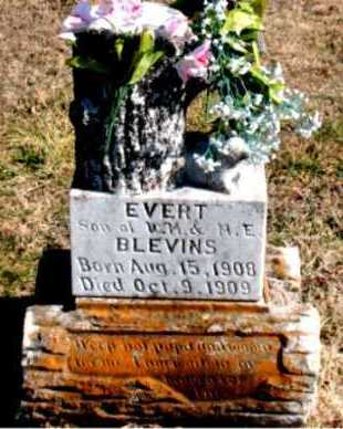 BLEVINS, EVERT - Carroll County, Arkansas | EVERT BLEVINS - Arkansas Gravestone Photos