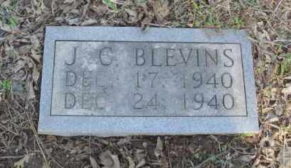 BLEVINS, J. C. - Carroll County, Arkansas | J. C. BLEVINS - Arkansas Gravestone Photos