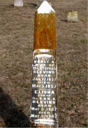 BLEVINS, NANCY A - Carroll County, Arkansas | NANCY A BLEVINS - Arkansas Gravestone Photos