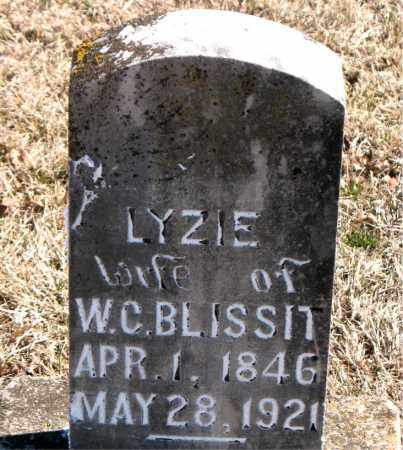 BLISSIT, LYZIE - Carroll County, Arkansas | LYZIE BLISSIT - Arkansas Gravestone Photos