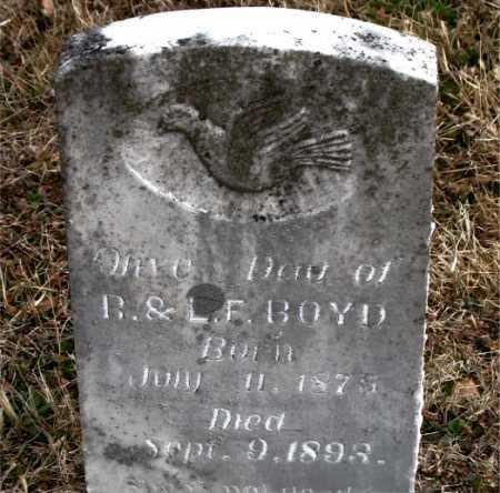 BOYD, OLIVE - Carroll County, Arkansas | OLIVE BOYD - Arkansas Gravestone Photos