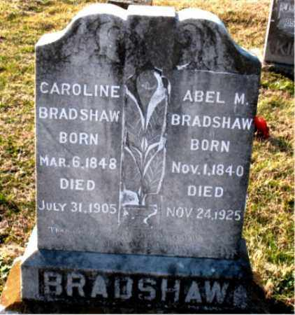 BRADSHAW, ABEL M. - Carroll County, Arkansas | ABEL M. BRADSHAW - Arkansas Gravestone Photos