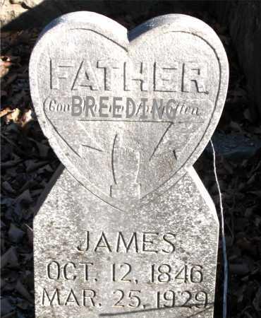 BREEDING, JAMES - Carroll County, Arkansas | JAMES BREEDING - Arkansas Gravestone Photos