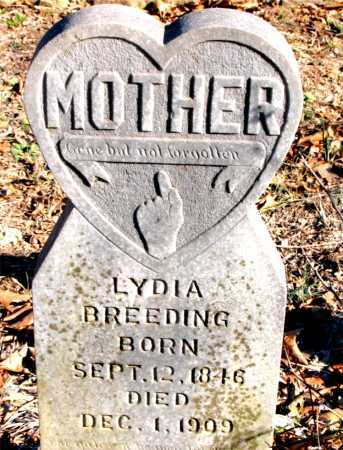 BREEDING, LYDIA - Carroll County, Arkansas | LYDIA BREEDING - Arkansas Gravestone Photos