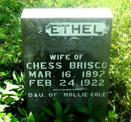 BRISCO, ETHEL - Carroll County, Arkansas | ETHEL BRISCO - Arkansas Gravestone Photos