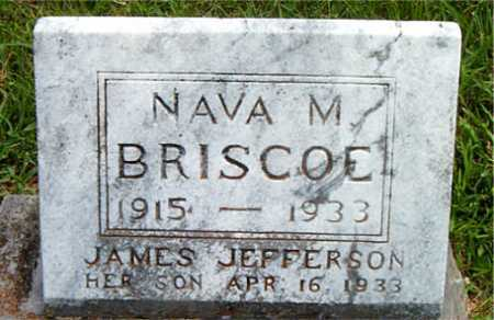 BRISCOE, NAVA M - Carroll County, Arkansas | NAVA M BRISCOE - Arkansas Gravestone Photos