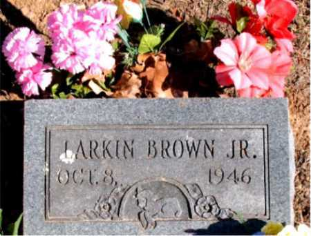 BROWN, JR., LARKIN - Carroll County, Arkansas | LARKIN BROWN, JR. - Arkansas Gravestone Photos
