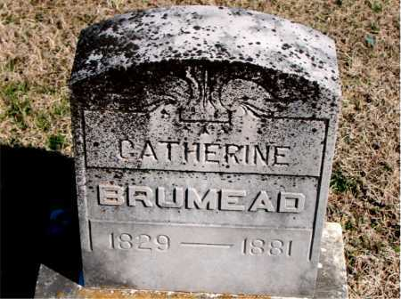 BRUMEAD, CATHERINE - Carroll County, Arkansas | CATHERINE BRUMEAD - Arkansas Gravestone Photos