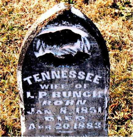 BUNCH, TENNESSEE - Carroll County, Arkansas   TENNESSEE BUNCH - Arkansas Gravestone Photos