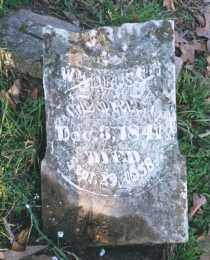 BUSSEY, WILLIAM D. - Carroll County, Arkansas | WILLIAM D. BUSSEY - Arkansas Gravestone Photos