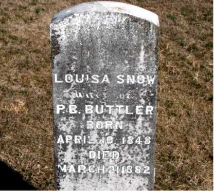 BUTLER, LOUISA - Carroll County, Arkansas | LOUISA BUTLER - Arkansas Gravestone Photos