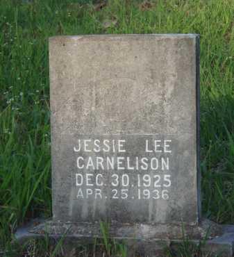 CARNELISON, JESSIE LEE - Carroll County, Arkansas | JESSIE LEE CARNELISON - Arkansas Gravestone Photos
