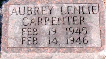 CARPENTER, AUBREY LENLIE - Carroll County, Arkansas | AUBREY LENLIE CARPENTER - Arkansas Gravestone Photos