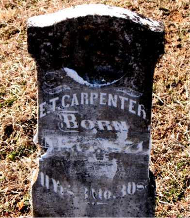 CARPENTER, E  T - Carroll County, Arkansas | E  T CARPENTER - Arkansas Gravestone Photos