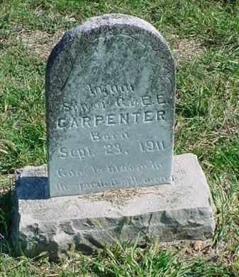 CARPENTER, INFANT SON - Carroll County, Arkansas   INFANT SON CARPENTER - Arkansas Gravestone Photos
