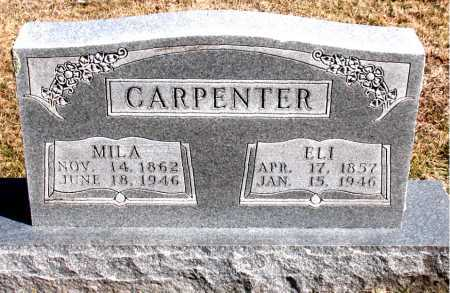 CARPENTER, ELI - Carroll County, Arkansas | ELI CARPENTER - Arkansas Gravestone Photos