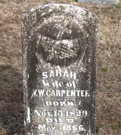 CARPENTER, SARAH - Carroll County, Arkansas | SARAH CARPENTER - Arkansas Gravestone Photos