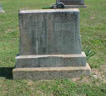 CARPENTER, W. H. - Carroll County, Arkansas | W. H. CARPENTER - Arkansas Gravestone Photos