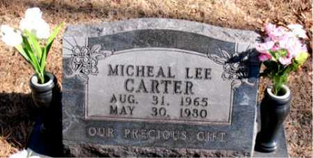 CARTER, MICHEAL LEE - Carroll County, Arkansas | MICHEAL LEE CARTER - Arkansas Gravestone Photos