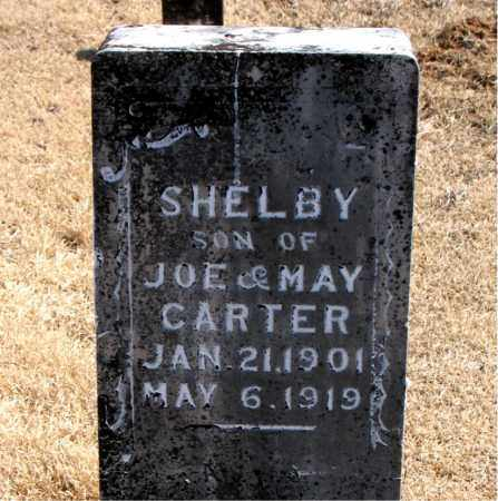 CARTER, SHELBY - Carroll County, Arkansas | SHELBY CARTER - Arkansas Gravestone Photos