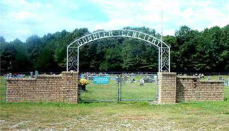 *GOBBLER CEMETERY GATE,  - Carroll County, Arkansas |  *GOBBLER CEMETERY GATE - Arkansas Gravestone Photos