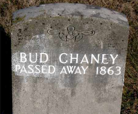 CHANEY, BUD - Carroll County, Arkansas | BUD CHANEY - Arkansas Gravestone Photos